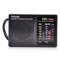 德生(TECSUN)R202T 收音机 黑色