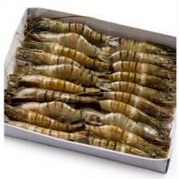 海之兴 草虾黑虎虾斑节虾 大虾海虾海鲜水产 1kg/袋 越南进口
