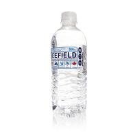 爱斯菲德 天然饮用水 500ml*12瓶