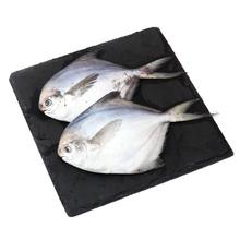 胜利之航 象山冻鲳鱼大 2条装 350g