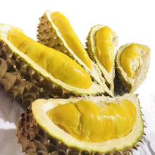 御贤果园 马来西亚猫山王榴莲 带壳整个发3-3.5斤 进口液氮冷冻水果