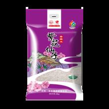 光明米业 紫花仙子香粳米 5kg