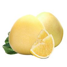 琯溪蜜柚 白柚红柚 4个组合装(2红2白)单果重1.8-2.2斤 (新上市)
