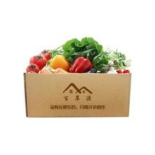 百草源 常规蔬菜套餐组合 3800g(鲜蔬10种)